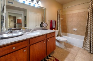 One Bedroom Apartments for Rent in Katy, TX - Bathroom & Shower