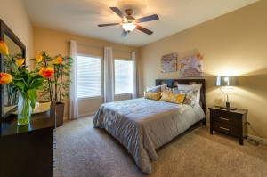 One Bedroom Apartments for Rent in Katy, TX - Bedroom