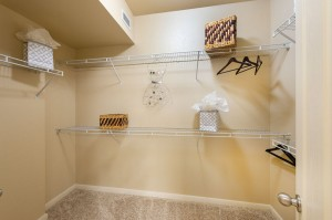 One Bedroom Apartments for Rent in Katy, TX - Bedroom Walk-In Closet (2)